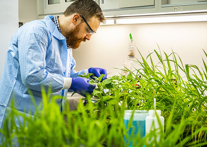 Plant Growth Laboratory